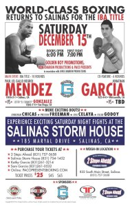 Paul Mendez Fight Poster